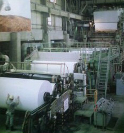 王子製紙工場内の様子